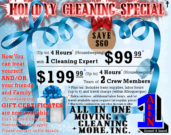 Holiday Cleaning Special